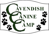 Cavendish Canine Camp